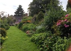 Netherbury Open Gardens
