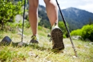 Wednesday Health Walks – Nordic Walking Adventure