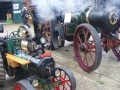 Autumn Steam Up/Halloween @ Bursledon Brickworks