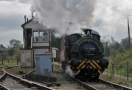 Northampton and Lamport Railway - Victorian Day