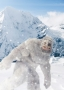 Meet the Abominable Snowman at Drusillas
