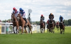 Our Opening Race Fixture Of 2020 - Ripon Races