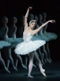 Streaming of Swan Lake at Bryanston School