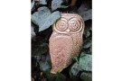 Young Person's Online Class: In Sky & On Ground: Copper Owl (Age 16+)