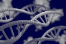 DNA Testing and Family History Online Talk