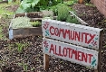 Crediton Community Allotment