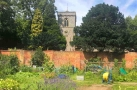 The Kitchen Garden of Caversham Court Talk