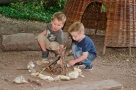 Half Term Activities - Trees and Wood