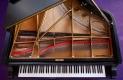 Emmanuel Church Lunchtime Concert - Capriccio Ensemble Piano Quintet